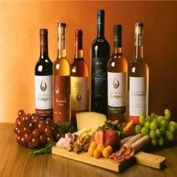 Venta de vinos en lima Perú